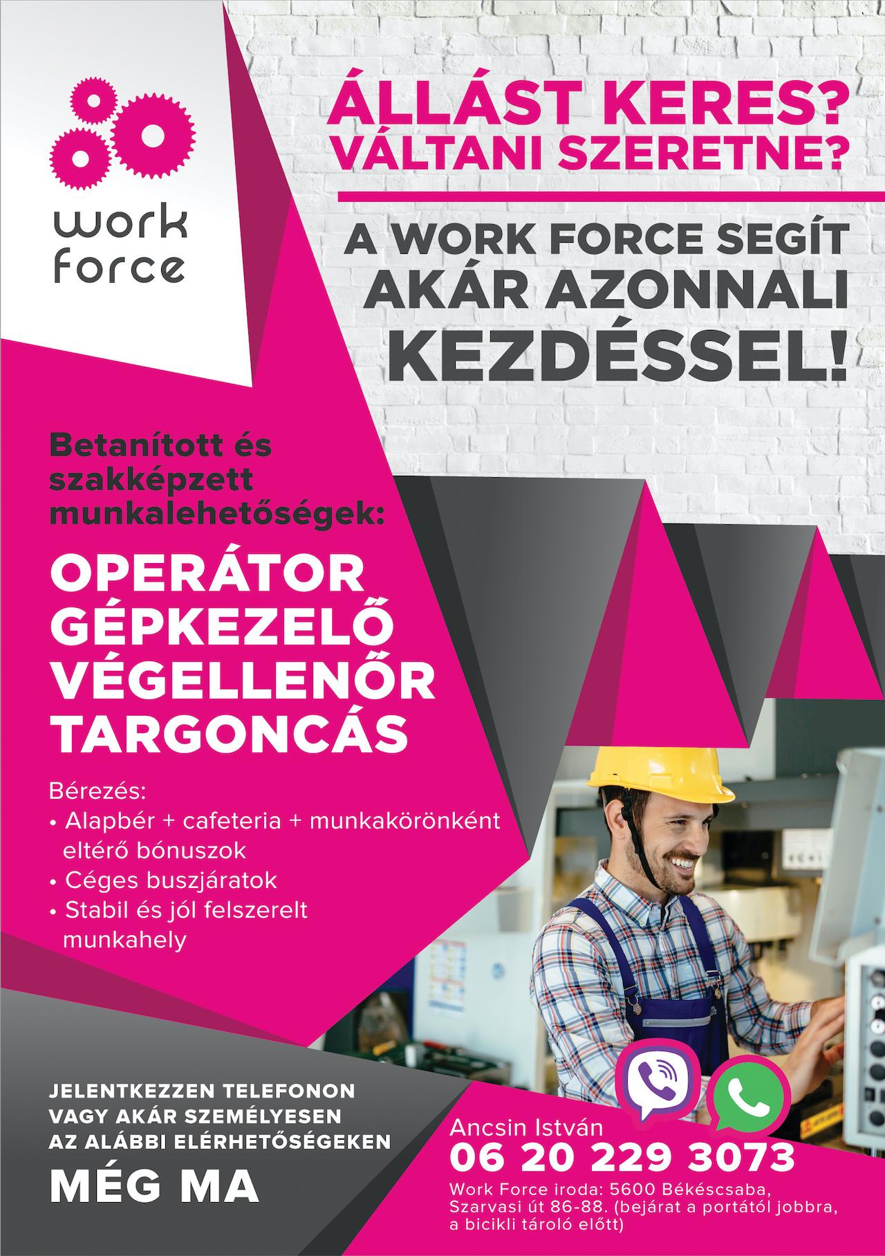 Work Force - Szórólap A5 148x210 - Tatabánya